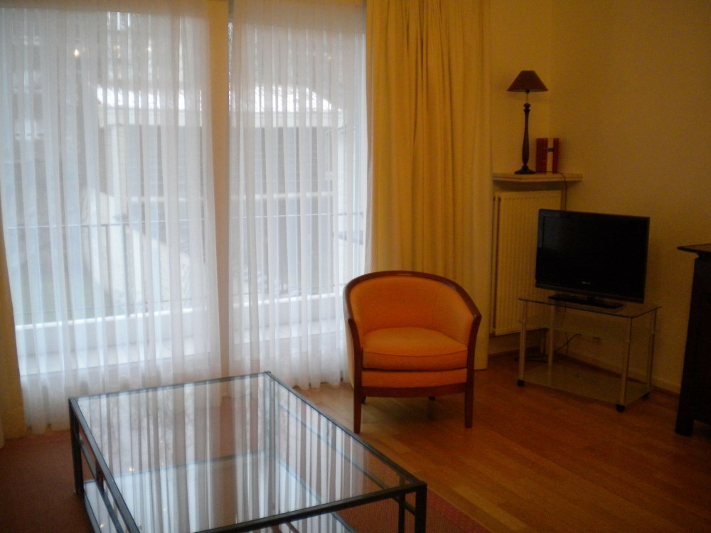 photo_BEAUTIFUL FURNISHED APARTMENT 1 BEDROOM + TERRACE