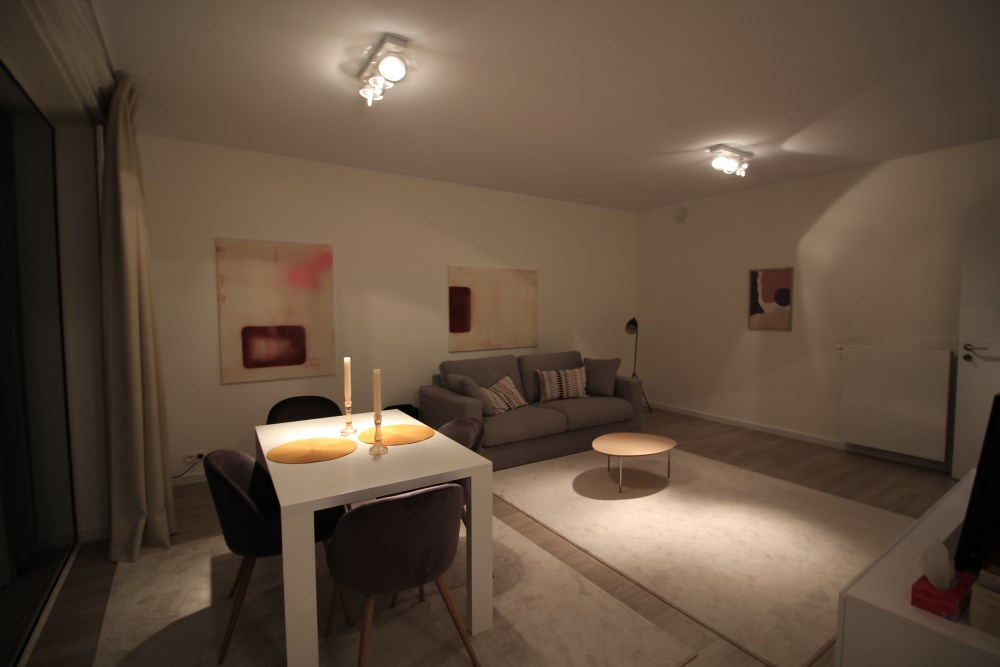 photo_Proximity Meiser - furnished 1 bedroom apartment