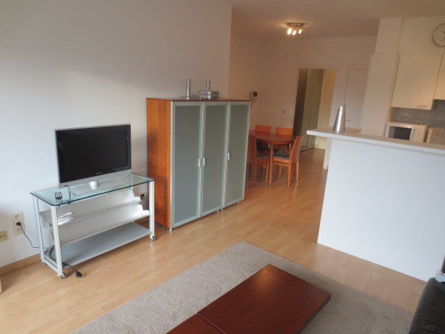photo_Stockel - Beautiful furnished 1 bedroom apartment-Terrace