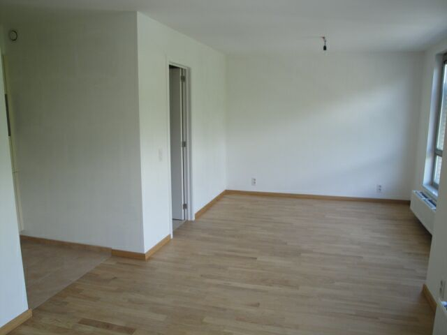 photo_Unfurnished flat close from Delta and Hankar