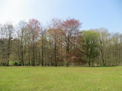 Plot surface for sale - BIERGES