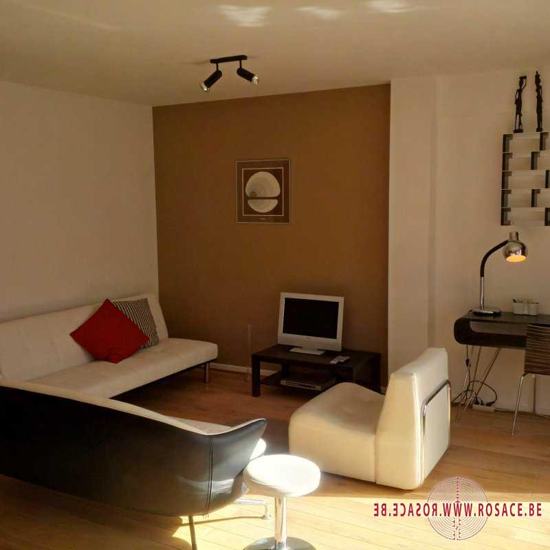 photo_BRUSSELS LOUISE: FURNISHED APARTMENT 1 BEDROOM & TERRACE