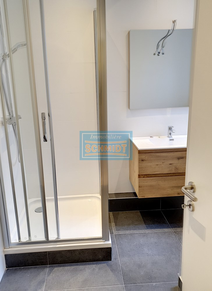 photo_Superb apartment for rent in heart of Brussels - 4 bedrooms