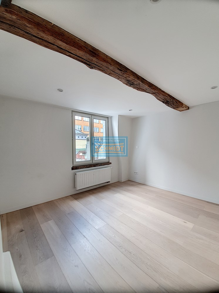 photo_Amazing triplex for rent in heart of Brussels