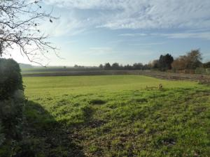 Plot surface for sale - CEROUX-MOUSTY